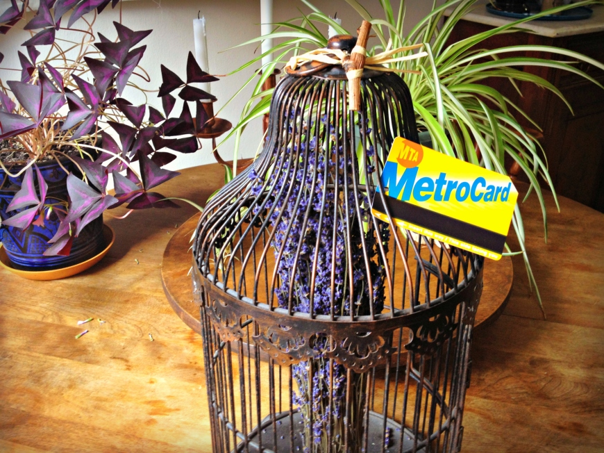 nyc metro card and birdcage - mindbodyplate